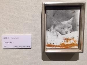 吾輩の猫展-11