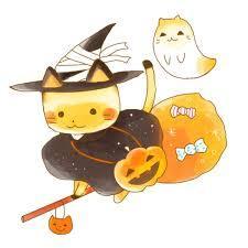 猫かぼちゃ