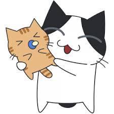 猫あかちゃん