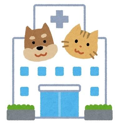獣医師動物病院ペット犬猫
