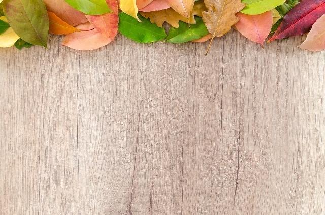 autumn-2902546_960_720 (640x423)