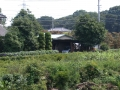 新井宿232-2 西新井宿交差点・首都高赤山方向側道から北東方向風景を見る ⅰ