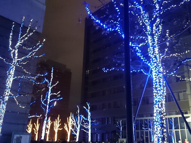 徳島文理大学イルミネーション