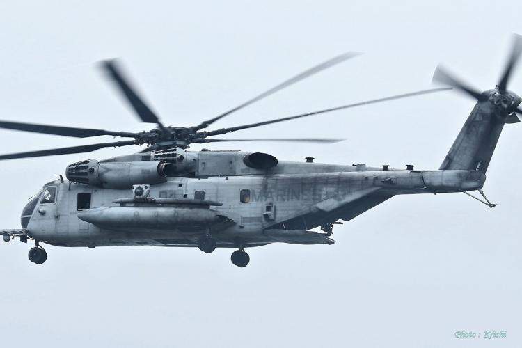 C-445.jpg