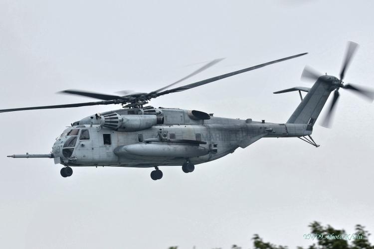 C-446.jpg