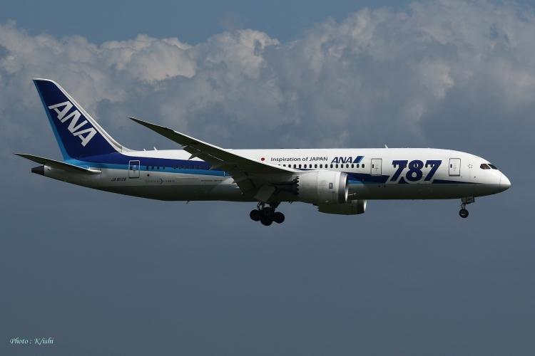 C-486.jpg
