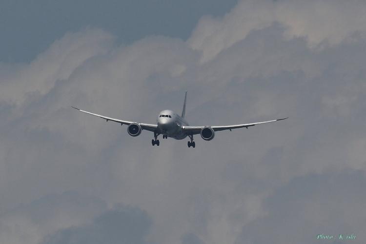 C-490.jpg