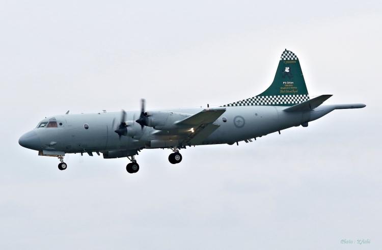 C-676.jpg