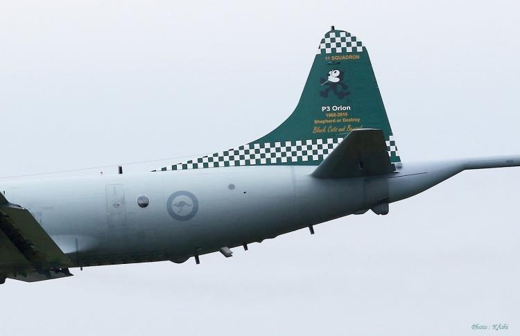 C-678.jpg