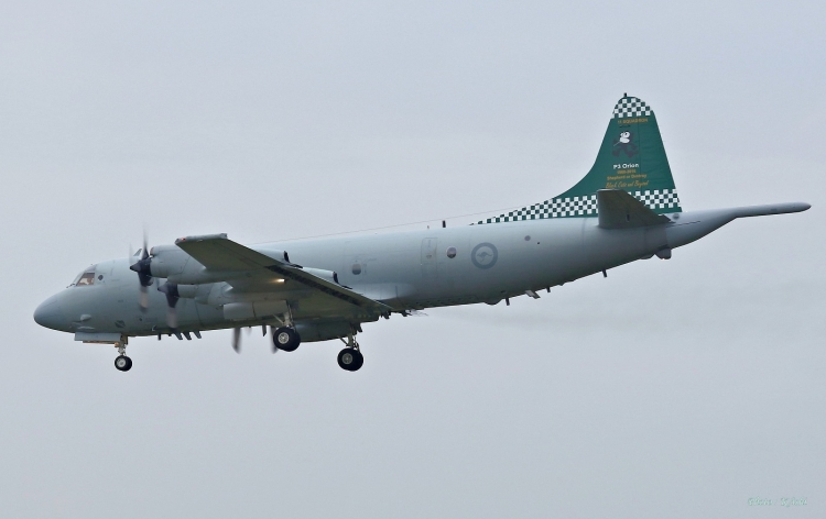 C-679.jpg