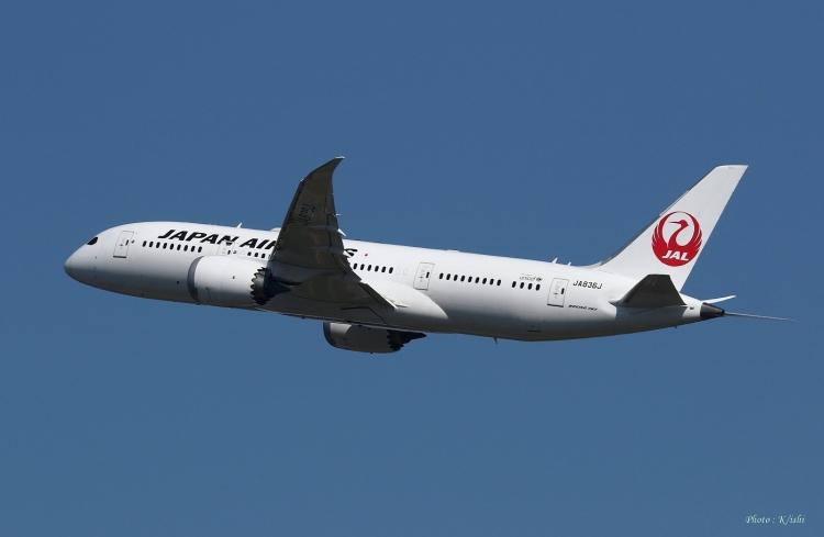 C-735.jpg