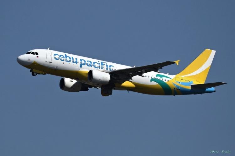 C-755.jpg