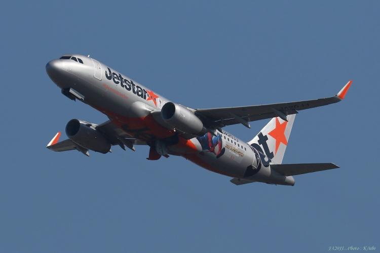 C-786.jpg