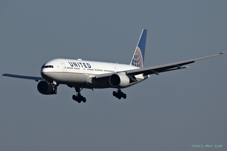 C-803.jpg