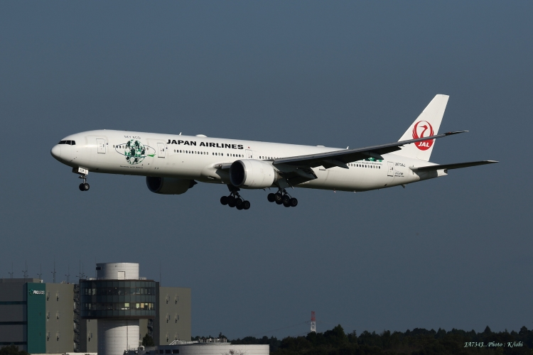 C-813.jpg
