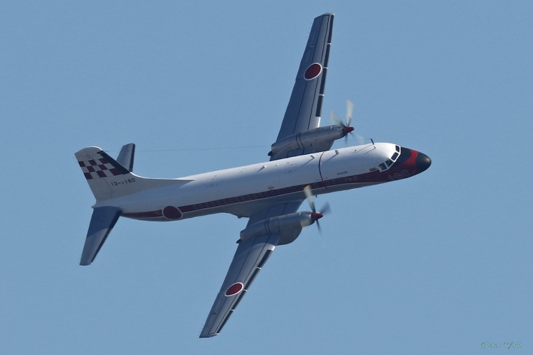 C-854.jpg