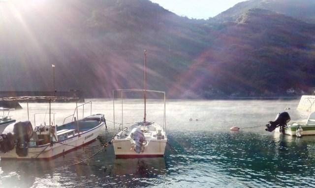 朝もやの海web
