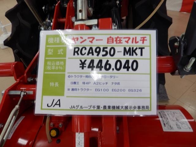 DSCN8155 (640x480)