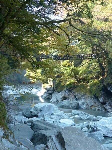 かずら橋 6