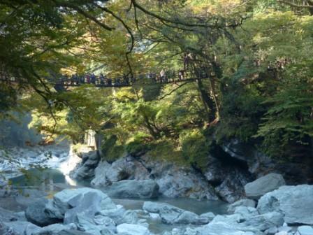 かずら橋 7