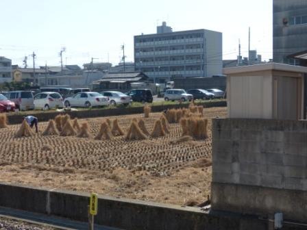 伊予鉄道・高浜線 衣山駅 3
