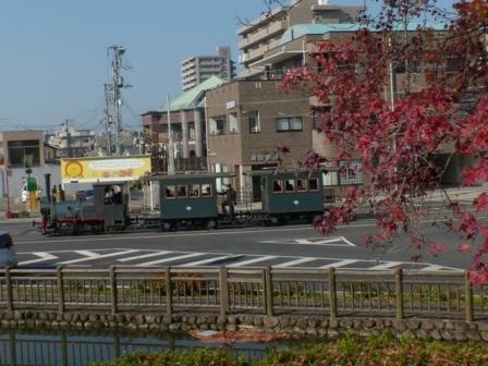 紅葉と坊っちゃん列車