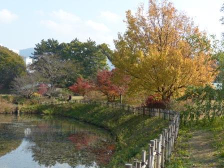 道後公園 内堀と紅葉