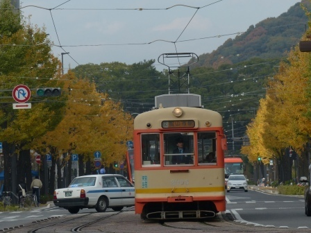 花園町・イチョウの黄葉と市内電車 2
