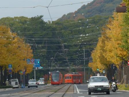 花園町・イチョウの黄葉と市内電車 3