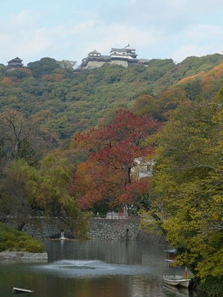 堀端の紅葉 & 松山城 2