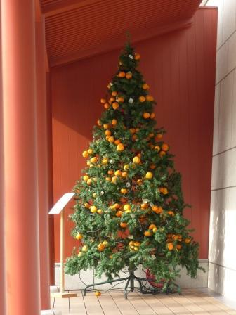 みかんツリー 2