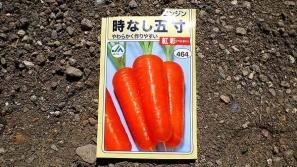 ニンジン2-1new