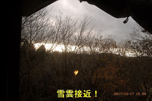 R0038331.jpg