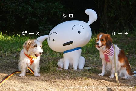171004_awaji34.jpg