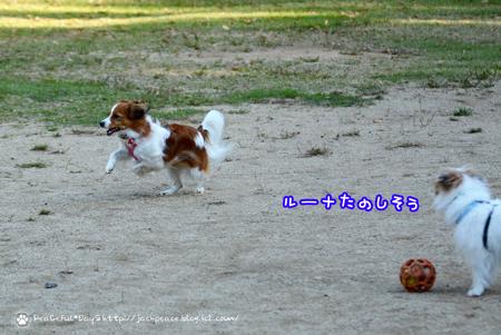 171106_yuasa22.jpg