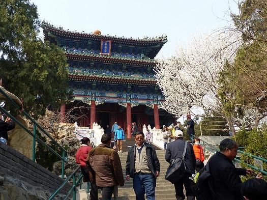 20170006china (16)