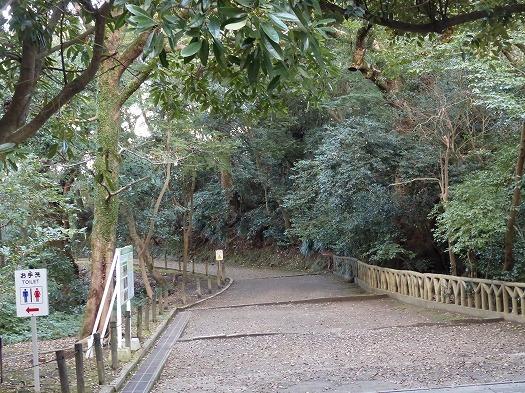 201711桜島城山 (8)
