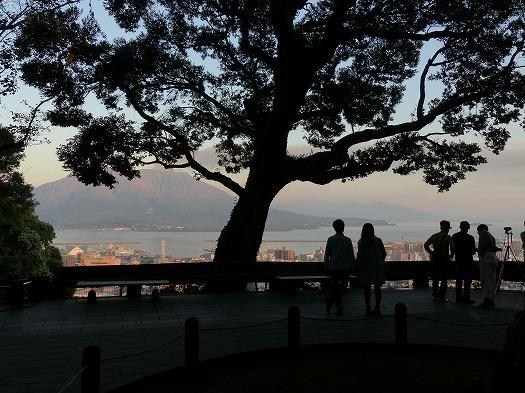 201711桜島城山 (6)