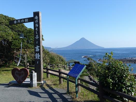 20171209番所花 (11)