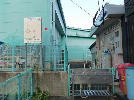 20121221枕崎 (12)