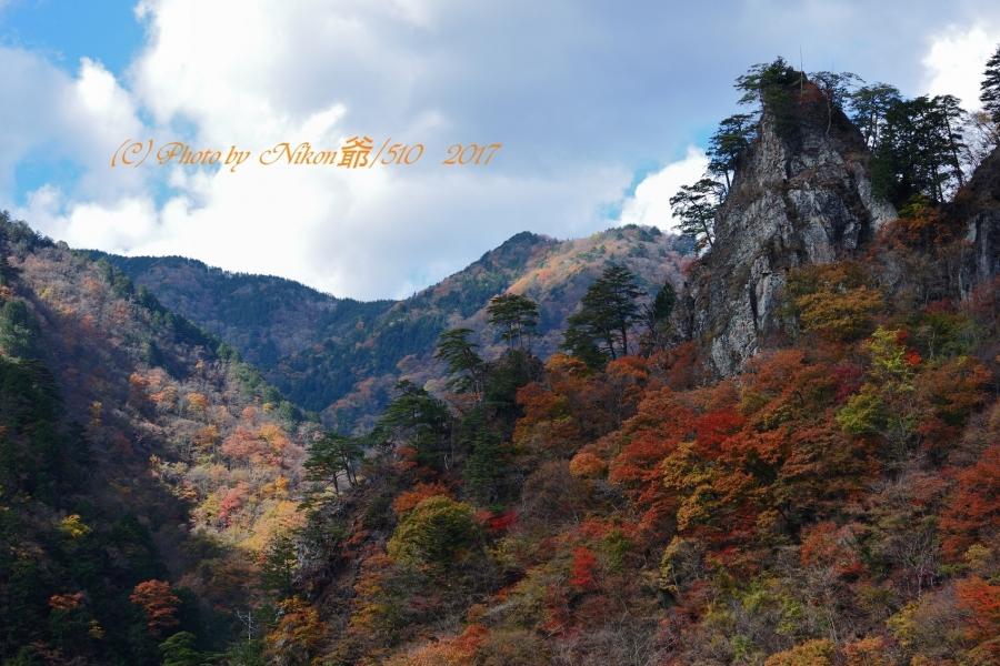 中津峡 SN1699