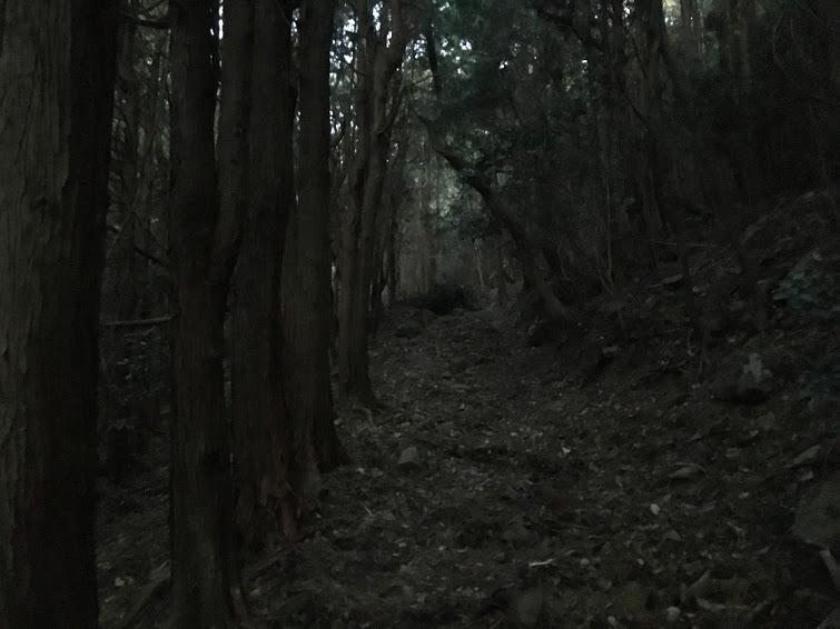 2017大船山/登山道