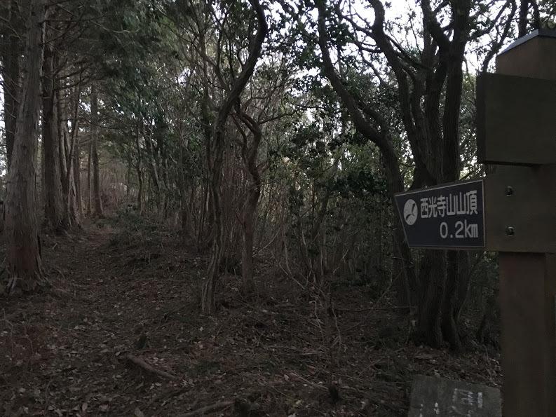 2017西光寺山/尾根道