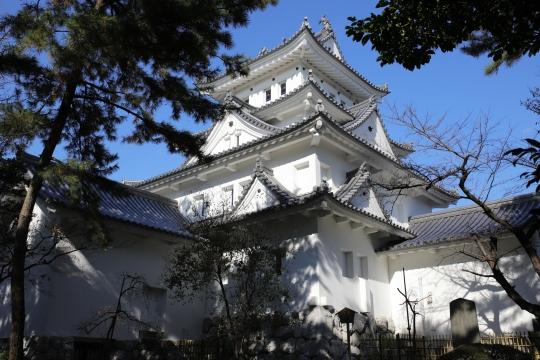 濃飛護国神社 06
