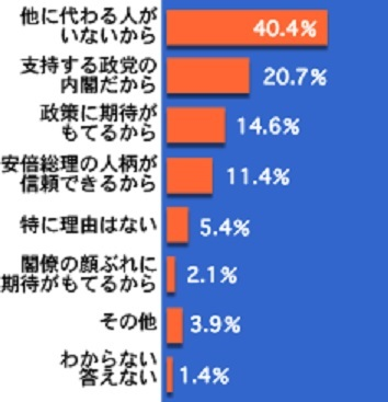 NNN_ans_02_01_graph_Abe-Siji-Riyu.jpg