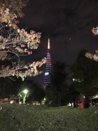 東京2020オリンピック1000日前 スペシャルライトアップ