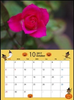 ハロウインカレンダー17