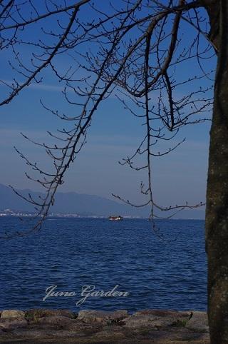 琵琶湖畔171203