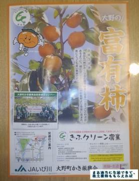 レシップHD 富有柿2L 04 201709