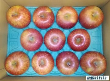 サンデー  ゴールド農園 葉とらずりんご3kg  01 201708